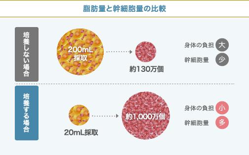 幹細胞を培養する場合としない場合の比較図